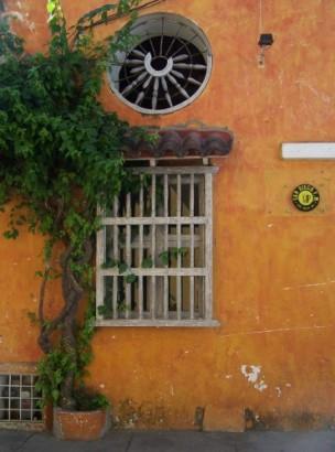 ventana amarilla con enrredaderas