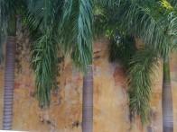 pared amarilla con palmas