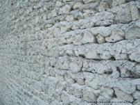 coral wall