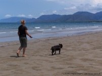 walking the dog in Port Douglas Australia