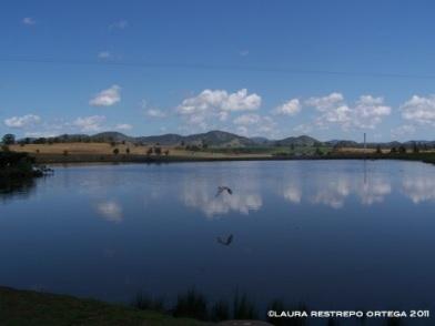 australia hervey bay lake