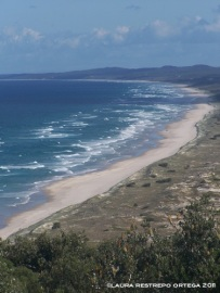 australia moreton island beach 2