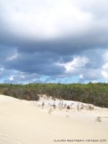 australia moreton island desert 1 4