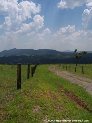 australia queensland atherton tablelands 1