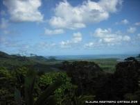 australia queensland cape tribulation 3
