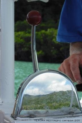 australia queensland daintree rainforest boat