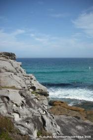 australia sydney bondi rocks 3