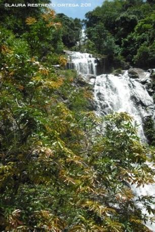 colombia antioquia cascada san luis 2