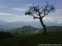 colombia venecia montañas 5