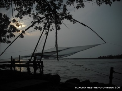 india kochi fishing nets 1