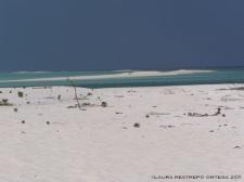 maldives baa atoll beach 3