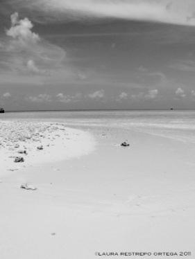 maldives raa atoll beach 3