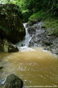 cascada de río terco
