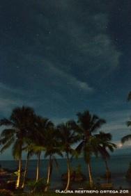 noche estrellada 2