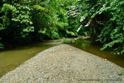 río terco