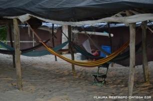 hamacas en Playa Blanca