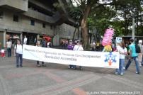 sociedad civil organización de personas con discapacidad