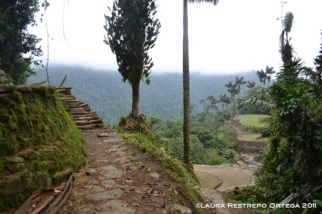 camino en la cima