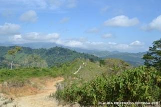 el camino en montañas