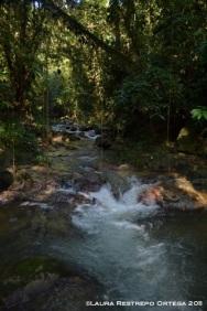río 1