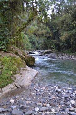 río 3