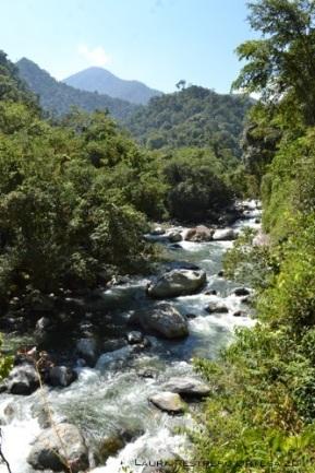 río 6