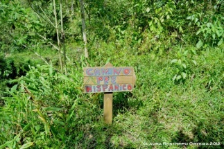 camino pre-hispánico