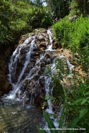 cascada vital2