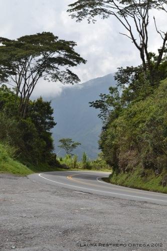 curva en la carretera