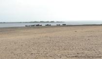 laguna Camarones