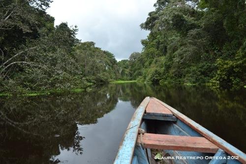 Pantano Cayarú
