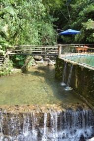 piscina natural2