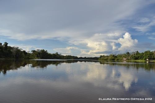 reflejos del río