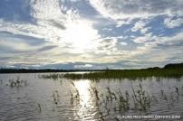 Río Amazonas al atardecer