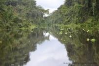 Río Bellavista
