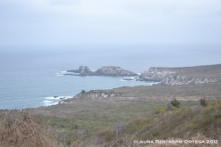 isla de la plata 4