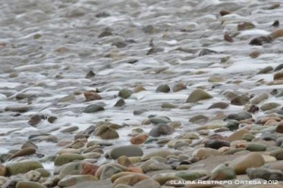 piedras en la playa de Ayampe