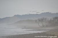 playa Ayampe 5