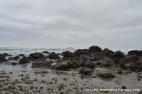 playa Ayampe 8