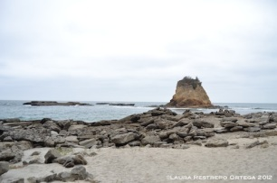 playa tortuga, los frailes 5