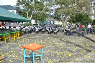 guayacanes parque jardin 2