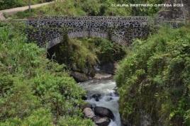 puente pizano 3