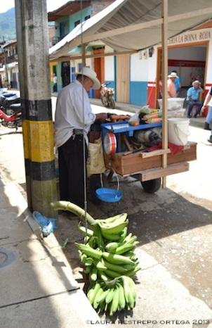 señor vendiendo fruta jardin