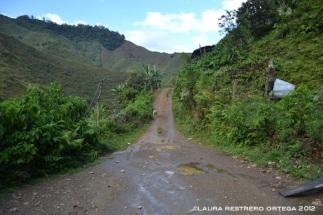 1-camino macanas