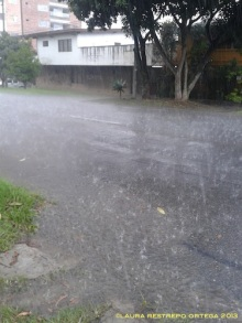 lluvia en la calle