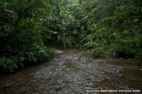 114 -rio terco