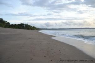 126 -playa tribugá 1
