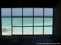 3 window
