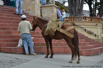 3 hombre y caballo fredonia