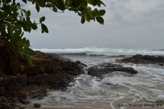 cabo tiburon - playa 4